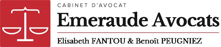 Elisabeth FANTOU : Infos référencement (Accueil)